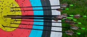 RECURVE/LONGBOW/TRADITIONAL/COMPOUND Trouble shooting Session (Own Equipment)